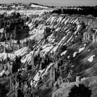 Picture in black & white of Bryce Canyon